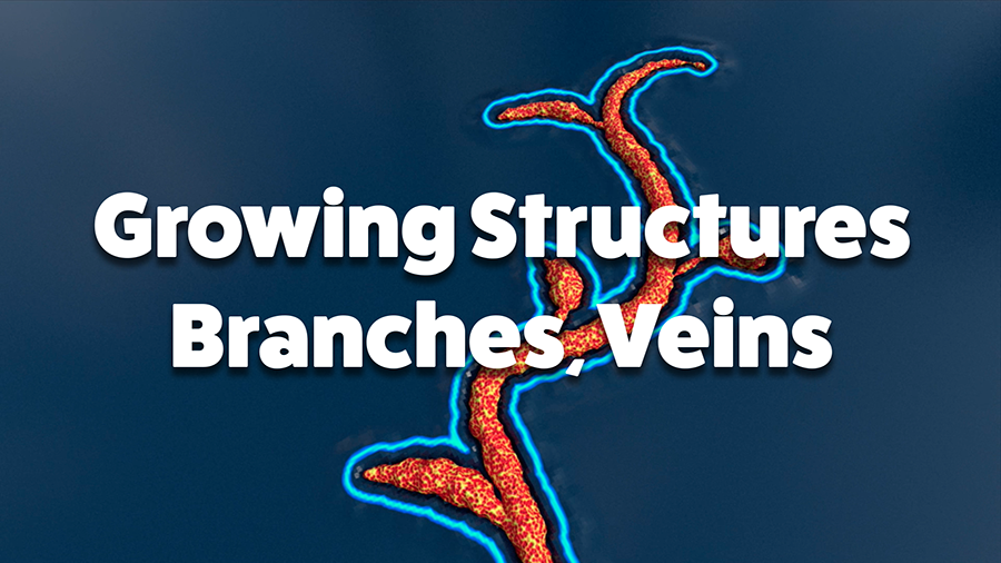 Growing Structures: Branches and Veins